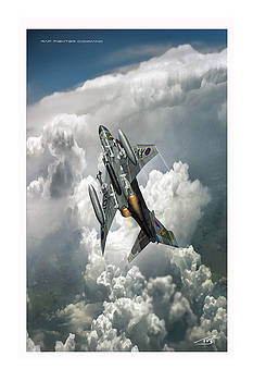 RAF Fighter Command by Peter Van Stigt
