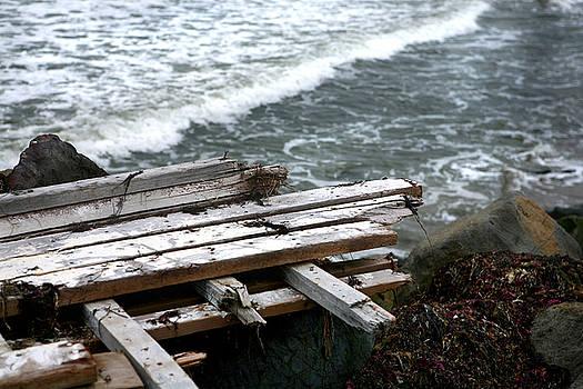 Raft on the Rocks by Lon Casler Bixby