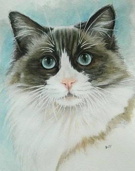 Barbara Keith - Ragdoll