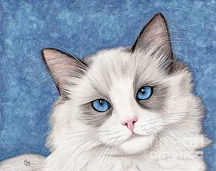 Ragdoll Bi-Color - Pet Me Please by Sherry Goeben