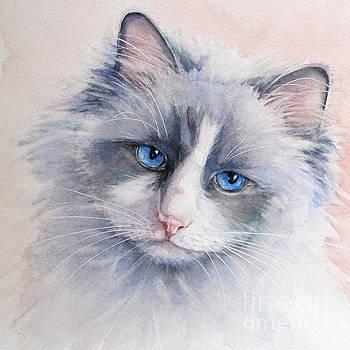 Ragdoll Cat by Bonnie Rinier