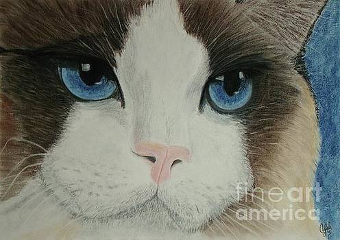 Blue Eyes by Cybele Chaves