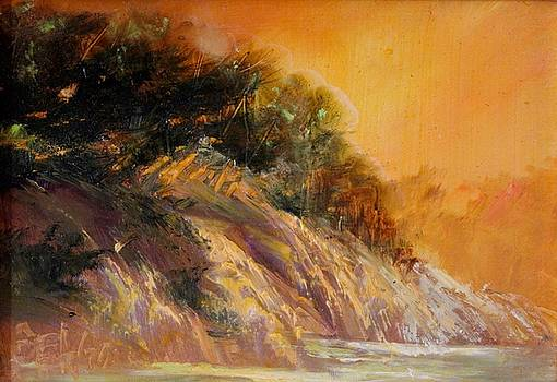 Ragged Point by Sally Seago