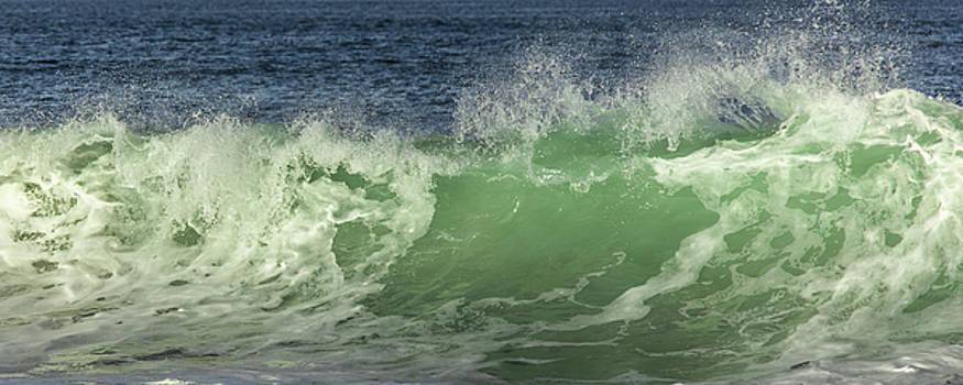 Paula Porterfield-Izzo - Raging Aqua Sea