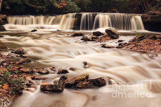 Raging Mash Fork Falls by Mel Petrey