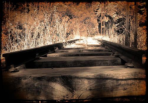 Rail by Ivan Gomez