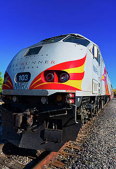 Rail Runner II by Stephen Anderson