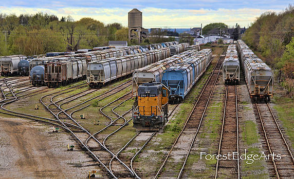 Rail yard of Ludington by Dick Bourgault