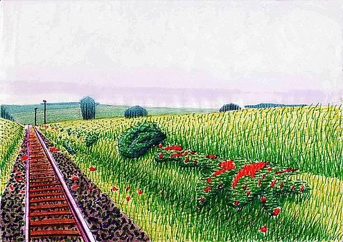 Railroad by Daniel Ribeiro