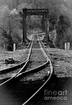 Rails by Douglas Stucky