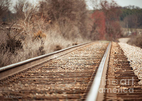 Rails by Todd Blanchard