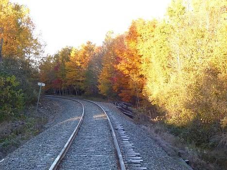Railway  by Scott Welton