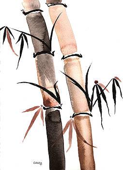 Casey Shannon - Rain Bamboo