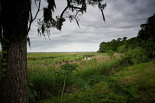 Rain clouds and marsh by John Simmons
