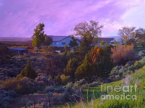 Rain clouds Farm house Egnar Colorado by Annie Gibbons