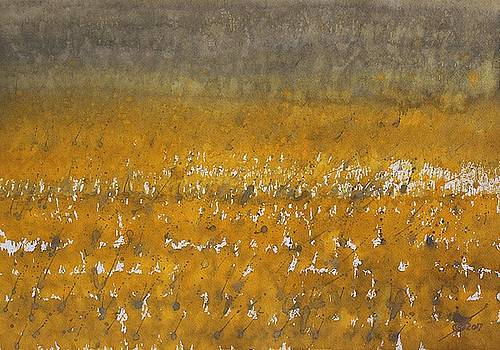 Rain over the Marsh by Sol Luckman