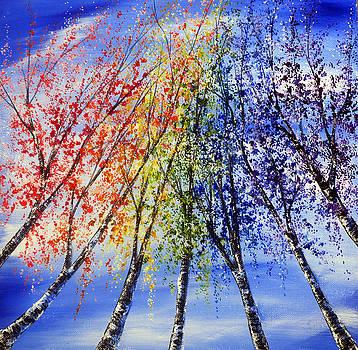 Rainbow Birches by Ann Marie Bone
