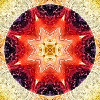 Rainbow Burst Mandala by Beth Sawickie