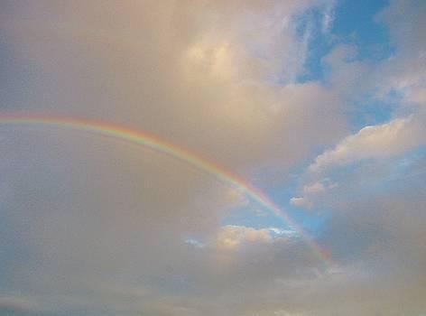 Rainbow by Carol Welsh