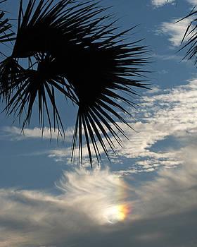 Peg Urban - Rainbow Cloud