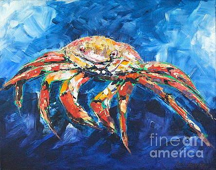 Rainbow Crab by Alan Metzger