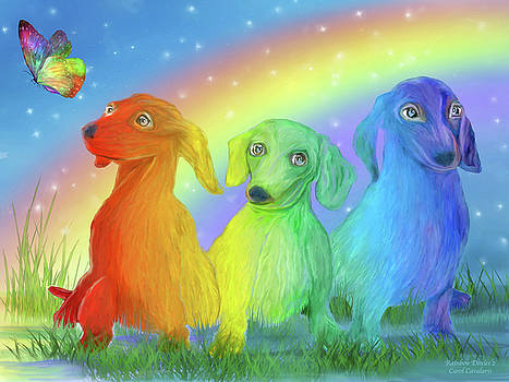 Rainbow Doxies 2 by Carol Cavalaris