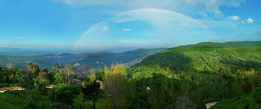 Rainbow Dream by Steven Robiner