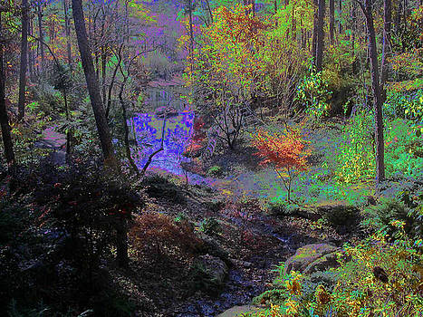 Anne Cameron Cutri - Rainbow Fairies Sweep Across the Landscape