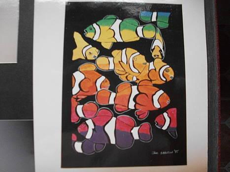 Rainbow fish by Jane Ibbitson