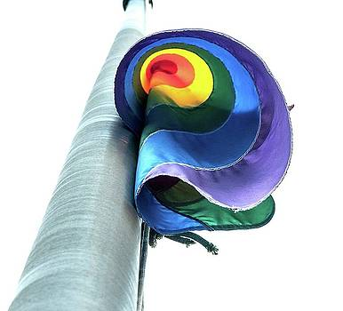 Rainbow Flag Orlando  by Eagle Finegan