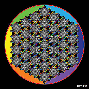 Rainbow Flower of Life WOB by David Diamondheart