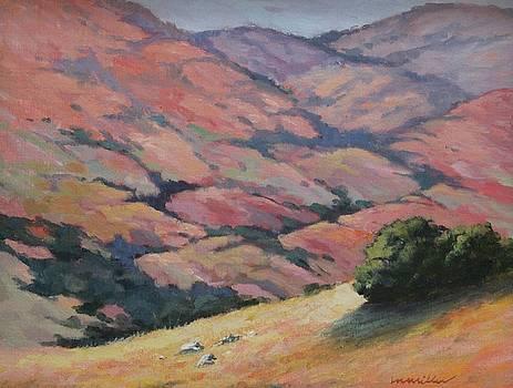 Rainbow Hills by Maralyn Miller