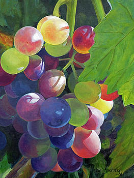 Rainbow in the Vineyard by Kathy Armstrong
