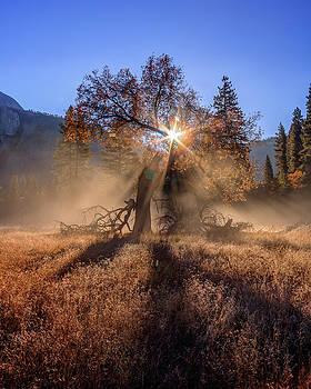 Rainbow in Yosemite Valley Ice Fog by Jeff Sullivan