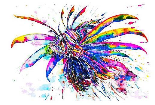 Zaira Dzhaubaeva - Rainbow Lionfish