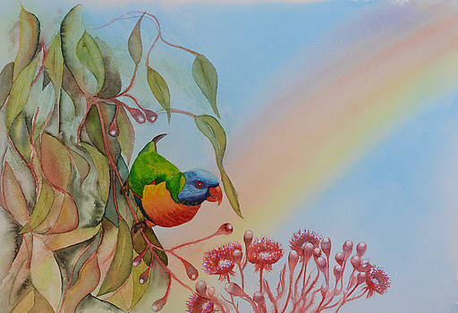 Rainbow Loikeet by Carolyn Judge