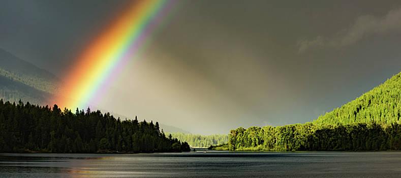 Rainbow Love by Joy McAdams