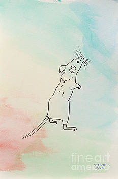 Rainbow mouse by Stefanie Forck