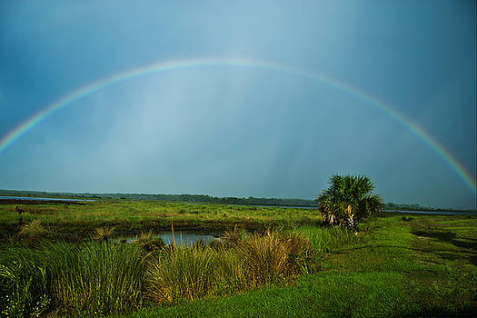 Rainbow Over Saint Marks by Frank Feliciano