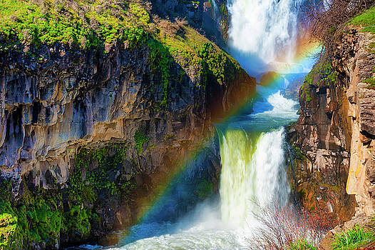 Rainbow over White River Waterfall in Eastern Oregon by Dee Browning
