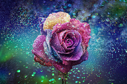 Rainbow Rose in the Rain by Ericamaxine Price