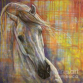 Rainbow  by Silvana Gabudean Dobre