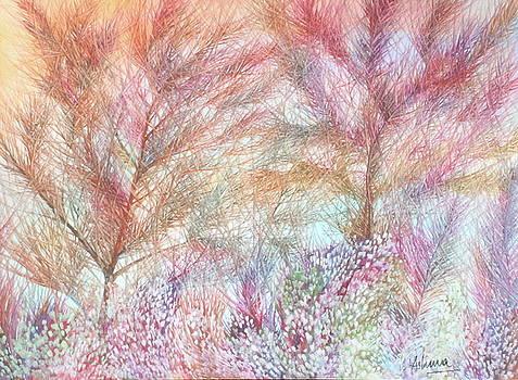 Rainbow Sky by Ashima Kaushik
