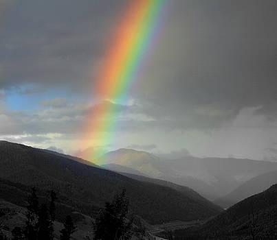 Rainbow Smile by Fiona Kennard