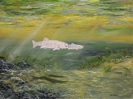 Rainbow Trout by Ken Ahlering