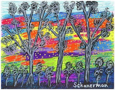 Rainbow Woods by Susan Schanerman