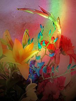Rainbows End by Bobbie Barth