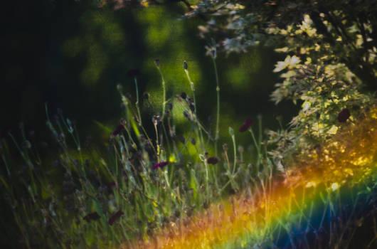 Paul W Sharpe Aka Wizard of Wonders - Rainbows End