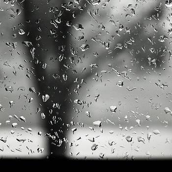 Raindrops by Eugene Forte