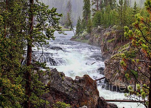 Rainfall on the Yellowstone by Stephen Schwiesow